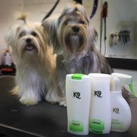 2 mooie yorkshire terriers verzorgt met de producten van K9